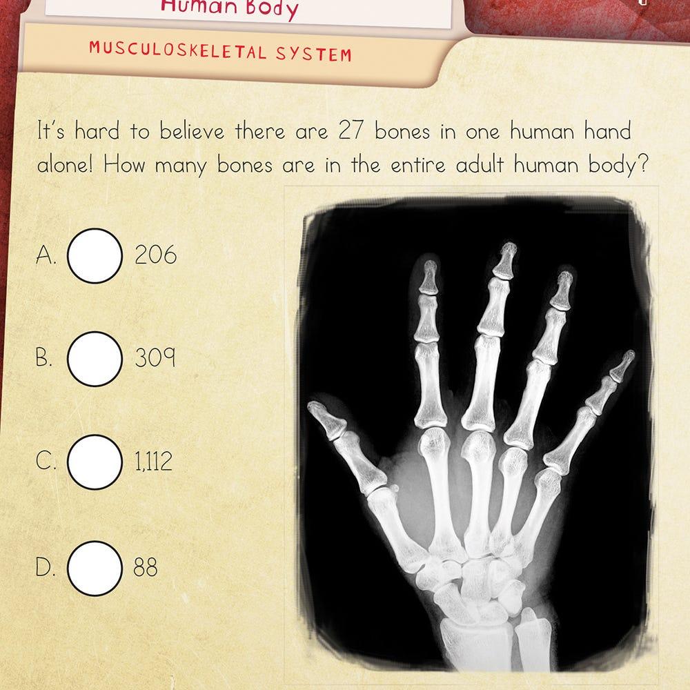 human body quiz cards